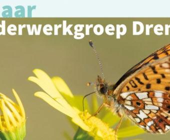 Uitstel Jubileumdag Vlinderwerkgroep Drenthe